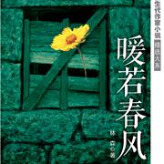 《暖若春风》长篇小说  作者:林森